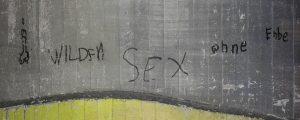 Wilden Sex ohne Enbe